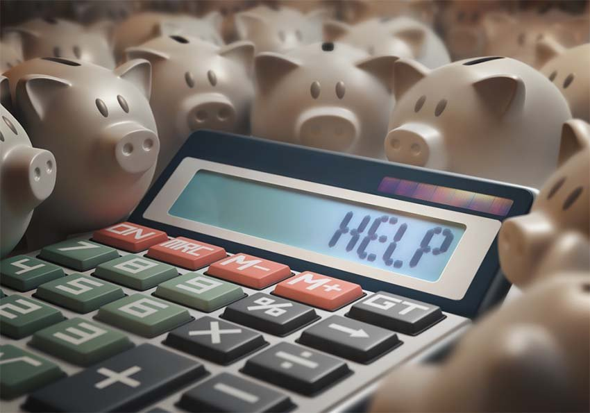 Calculator Pigs